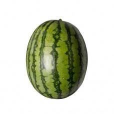 Watermelon Brown 2-3Kg