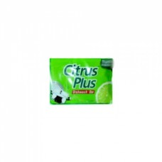 Citrus Plus Dishwash bar